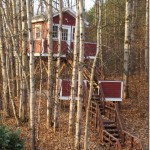 Black Star Farms treehouse
